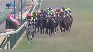 2019.12.22 Arima Kinen (The Grand Prix) (JPN) - Lys Gracieux