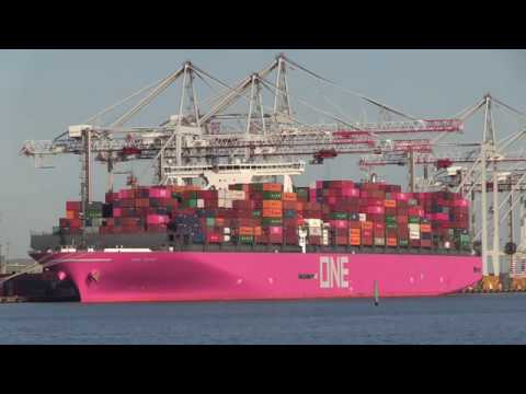 One Grus | Ocean Network Express Container Ship calls into Southampton 25/03/19