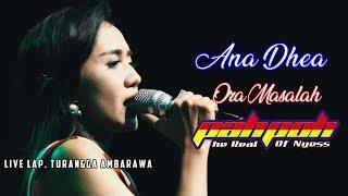 Ana Dhea Ora Masalah - OM. PAHPOH lIve Ambarawa 2019.mp3
