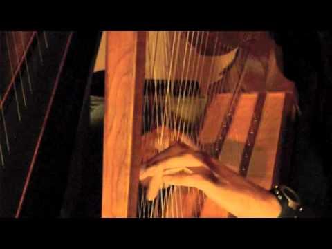 Just Love - Raphaël Pinel - 6/6 cross strung chromatic harp live