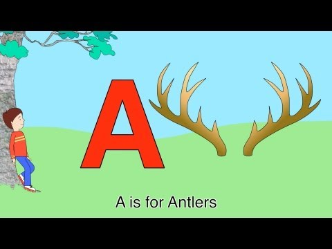 Best ABC Alphabet Song (A is for Antlers-Zee)