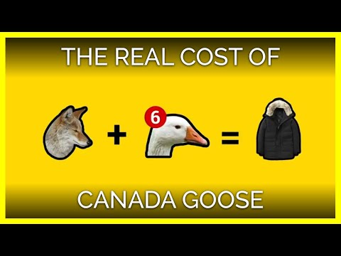 This Is The Real Cost Of A Canada Goose Jacket