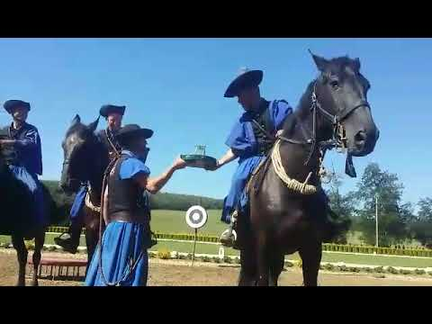 Horse show in Hungarian Great Plain no. 3 - The Puszta 5