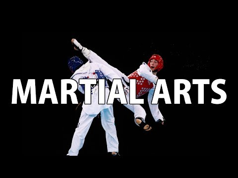 Misinformed - Martial Arts