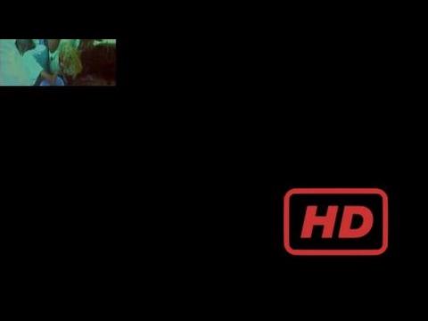 Popular Videos - Smuggling & Documentary Movies hd : Ape Smuggling - Congo