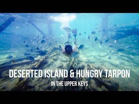 Deserted Island & Hungry Tarpon in the Upper Keys