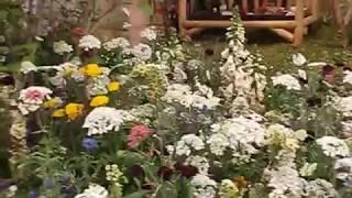 ガーデニングショウ2017 A-13「もうひとつの未来」Gardening Show 2017 , JAPAN The Metlife dome thumbnail