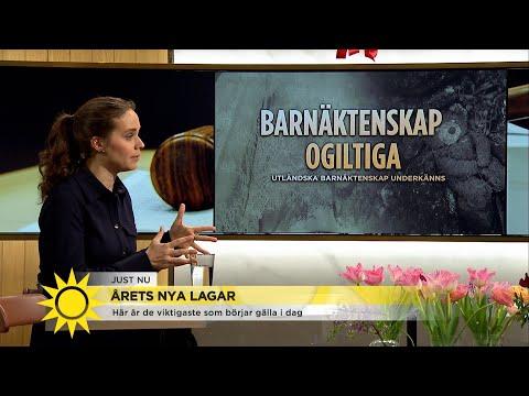 70 nya lagar - börjar gälla idag - Nyhetsmorgon (TV4)