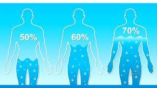 Água: sinônimo de vida, elemento indispensável a todos