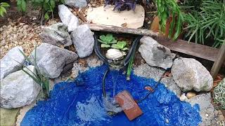 Tortoise Pond & Habitat EXPANSION!