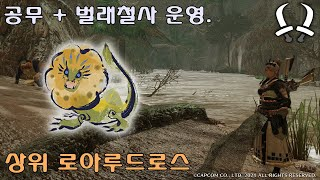 [MHR] 쌍검. 공무 + 벌래철사 운영. 상위 로아루…