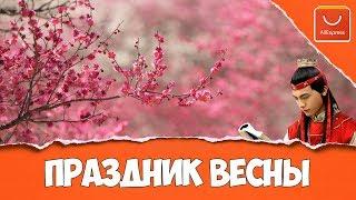 видео Китайский Новый Год на АлиЭкспресс