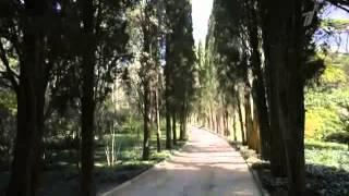Крым 05 Гурзуф
