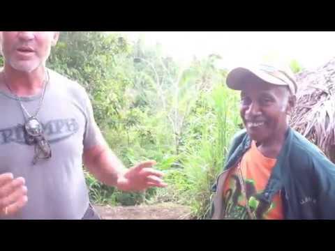Baker Vs  Vanuatu 2016