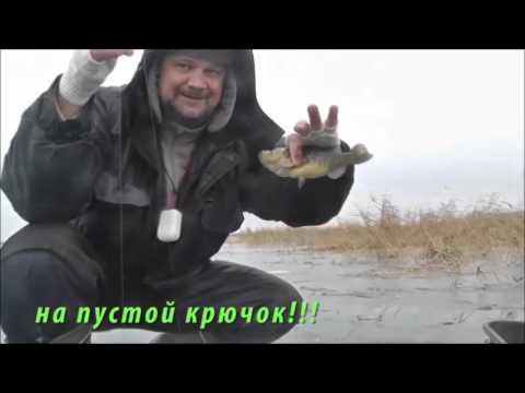 рыбалка на ротана курганская область