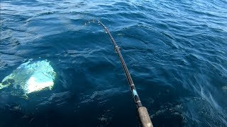EXTREME FISHING!!! AWESOME FISH SEA FISH...