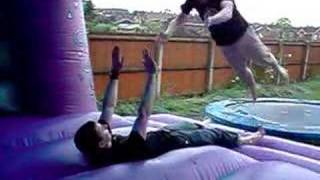 Slomo Somersaults