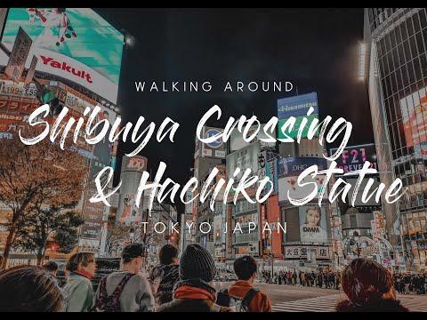 Walk At The Famous Shibuya Crossing | Hachiko Memorial Statue | And New Year's Eve At Shibuya, Tokyo