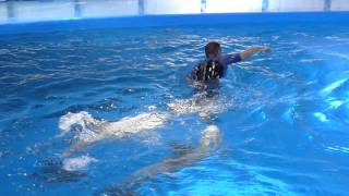 Delfiny i foki w Barcelonie 2013