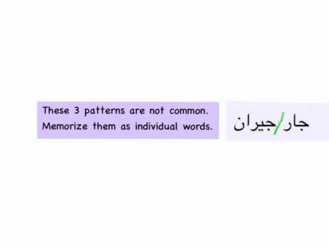 Al Kitaab Lesson 2 Part 3 (Broken Plurals, Identifying Difficult Roots, Human Plural Agreement)