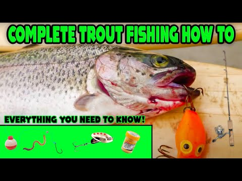 COMPLETE In Depth Trout Fishing How To. TOP 3 Methods For SUCCESS!