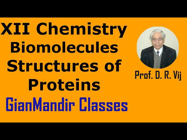 XII Chemistry | Biomolecules | Structures of Proteins by Gourav Sir