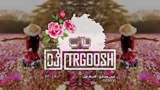 دي جي طرقوش و إيمي هيتاري - الحياة أمل | DJ TRGOOSH ft. Emy Hetari - Al-hayat Amal