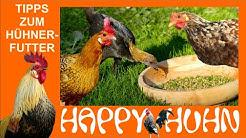 E11 Artgerechte Hühnerfütterung - HAPPY HUHN, Allgemeines zu Futter und Wasser (Hühner füttern)
