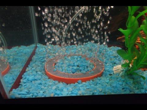 Посылка для аквариума - распылитель круглый.
