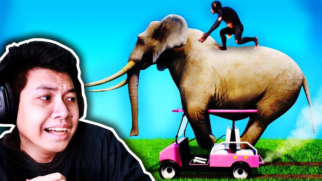 *ช้างขับรถ* ลองเป็นผู้ดูแลสัตว์ 1 วัน (สวนสัตว์ป่วนสุดเกรียน)