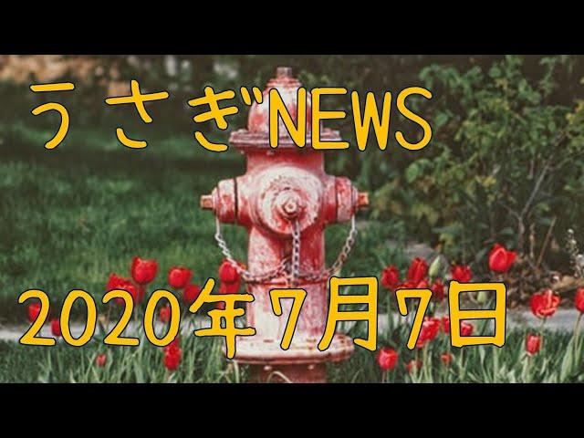 20200707 うさぎ 室内紹介 消火栓