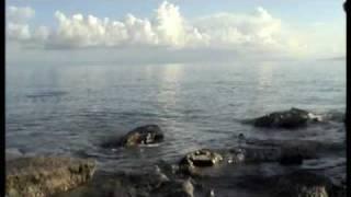 Лосось на оз.Иссык-Куль