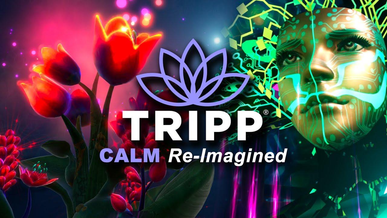 Tripp VR, la meditación de otra realidad