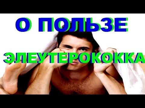 О ПОЛЬЗЕ ЭЛЕУТЕРОКОККА