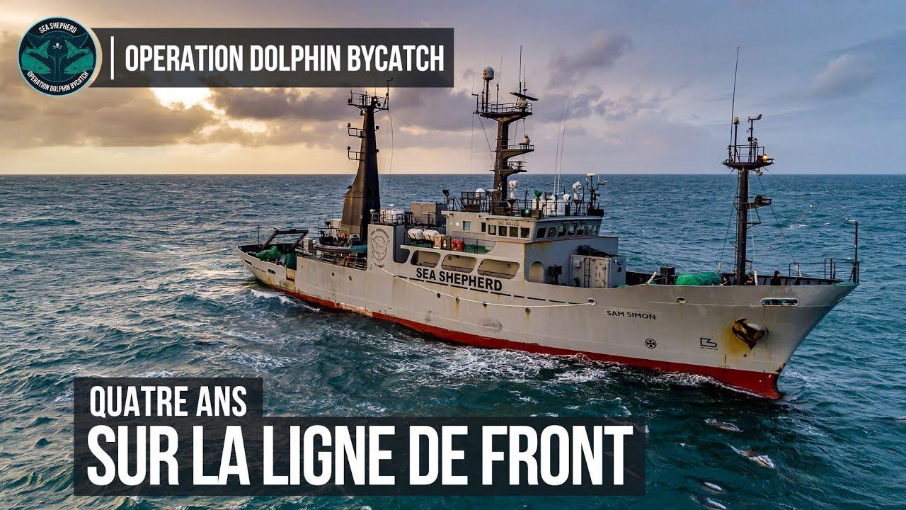 Opération Dolphin ByCatch : 4 ans sur la ligne de front