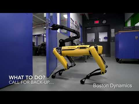 Robot Dogs Escape Boston Dynamics' Lab!