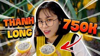 Misthy lần đầu thử Thanh long mắc nhất Việt Nam: 750.000 || WHAT THE FOOD