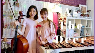 ✝ As The Deer Marimba + Cello Cover | Therese Ng & Sophia Ng