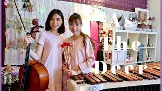 ✝ As The Deer Marimba + Cello Cover   Therese Ng & Sophia Ng