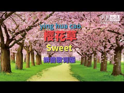 樱花草-sweet   拼音歌词版 ying hua cao -sweet pinyin lyrics