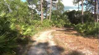 № 2323 США Дикая Природа Флориды Econ River Wilderness 23.04.2012