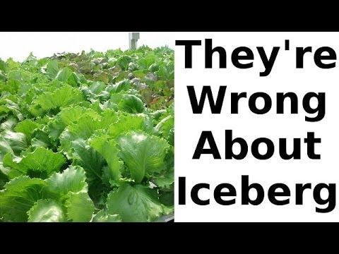 The Iceberg Lettuce Nutrition Myth