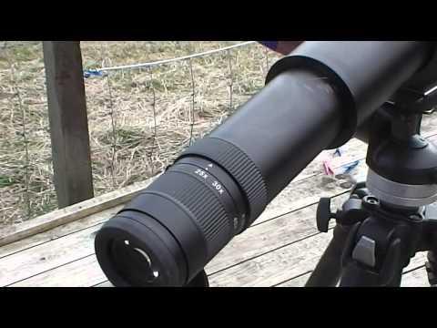 Zeiss 18-45x65 Field Scope, Swarovski CTC & CTS.  Best spotter for varminting?