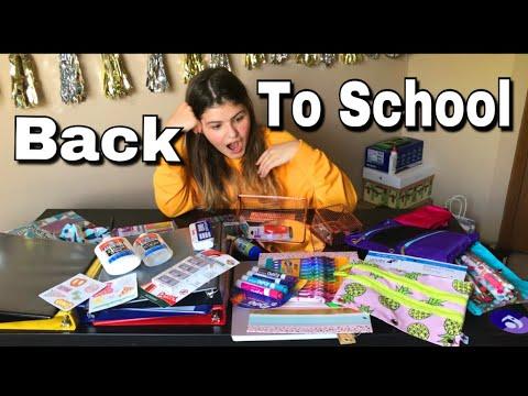BACK TO SCHOOL 2018  ОБзор Американская канцелярия Что я купила Бэк ту скул холл