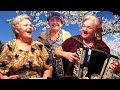Цыган ходит по бульвару☀️ 😊 Эх, спляшу!!! Цыганская народная песня под баян💕ОЧАРОВАТЕЛЬНЫЙ дуэт!!!