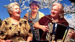 �������� ���� Цыган ходит по бульвару☀️ 😊 Эх, спляшу!!! Цыганская народная песня под баян💕ОЧАРОВАТЕЛЬНЫЙ дуэт!!! ������