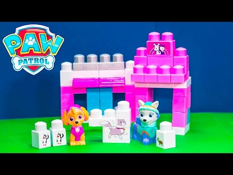 PAW PATROL Nickelodeon Katie Pet Shop Skye + Everest Ionix jr Toys Video Parody