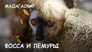видео Мир Приключений - Салари Бэй. Лучший отдых на острове Мадагаскар. Salary bay. Madagascar.
