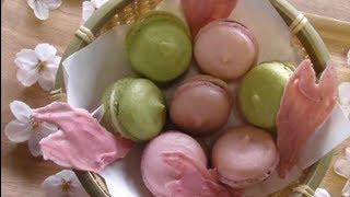 春マカロン 桜の花びらチョコ Spring Macaron Sakura Petal Choco
