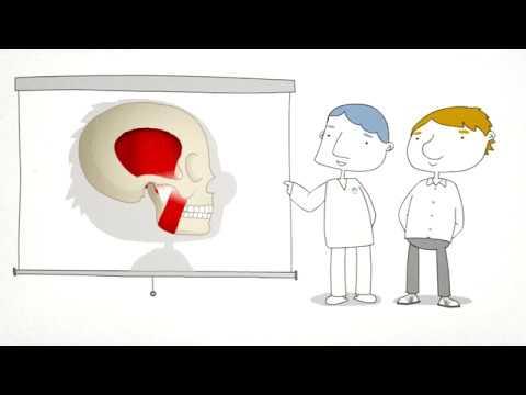 A fisioterapia e a ATM